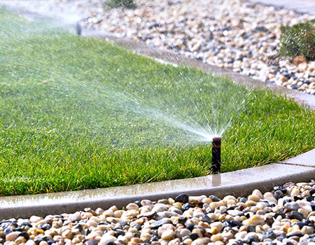 How to maintain your lawn by watering it properly